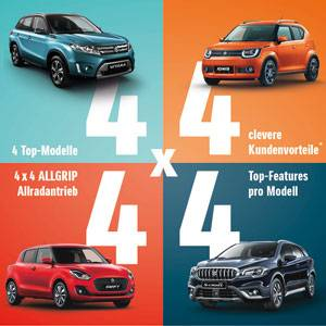 Suzuki Aktion 4x4x4x4